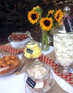 national s'mores day | polka dots and picket fences