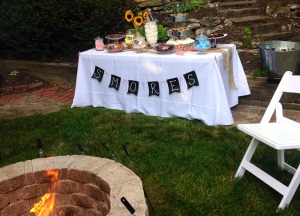 national s'more party | polka dots and picket fences