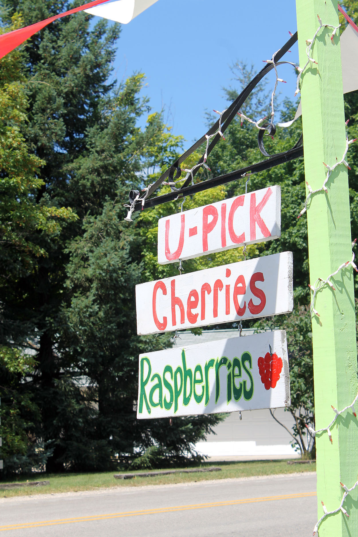 cherrypicking2